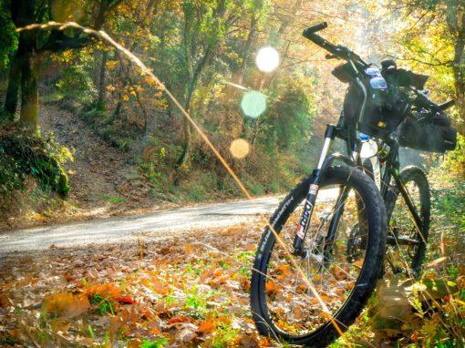 Actividad 4 Mountain Bike